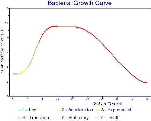 bacterie groei curve